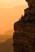 The warm sunlight of a summer's sunrise fills the Grand Canyon.