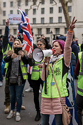 "© Licensed to London News Pictures. 12/01/2019. London, UK. Pro-Brexit ""yellow vest"" protesters outside Downing Street in London. James Goddard, who was involved in an incident with Conservative MP Anna Soubry, was arrested by police this morning. Photo credit: Rob Pinney/LNP"