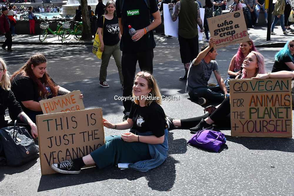 Vegan activists of Animal Rebellion sitin and blockade Charing Cross, on 17 August 2019, London, UK