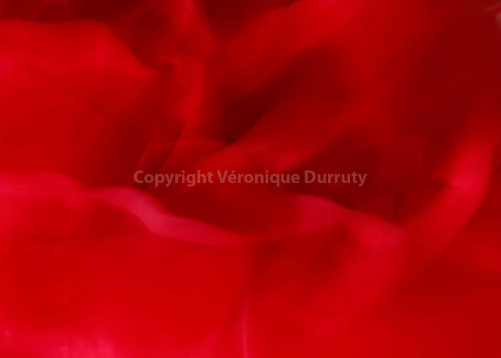 Crazy feeling, 2015<br /> <br /> S&eacute;rie &quot;ma croix&quot;<br /> Inspir&eacute; par Gloria, album Horses de Patti Smith<br /> <br /> 15 cm x 21 cm<br /> Tirage pigmentaire sur papier Hahnem&uuml;hle100% coton<br /> Edition de 3 exemplaires<br /> <br /> me contacter v.durruty@gmail.com<br /> <br /> autres formats disponibles.