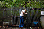 Robbie Grumbles feeds one of three of his bears he has raised since they were cubs on his property in Travelers Rest, South Carolina September 30, 2010. Mr. Grumbles uses these bears to train his dogs and other dog owners how to bear hunt safely.
