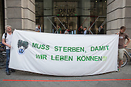 Environmental protest against VW