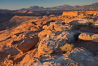 Burr Point Overlook of the Canyons of the Dirty Devil River, the Henry Mountains are in the distance, Utah USA