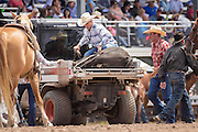 An injured steer is taken from the Frontier Park Arena after being injured during team roping at the Cheyenne Frontier Days rodeo at  July 24, 2015 in Cheyenne, Wyoming. Frontier Days celebrates the cowboy traditions of the west with a rodeo, parade and fair.