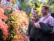 NEW YORK - MARCH 30:  NYBG Orchid Evening on March 31, 2017 in New York City. (Photo by Ben Hider)
