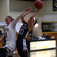 Women's Basketball: The College of St. Scholastica Saints vs. University of Wisconsin-Stout Blue Devils