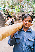 Workers carrying large bamboo building material