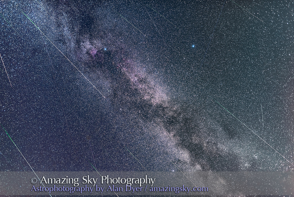 The Perseid meteors shooting through Cygnus and the Summer Triangle area of the summer Milky Way, on the night of Wednesday, August 12, 2015. Deneb is the star at top left, Vega at top right, and Altair at bottom. The Perseids shoot across the frame from top left to bottom right. Other streaks are sporadic meteors or short satellite trails. I masked out other long satellite trails that were distracting to the image&rsquo;s focus on depicting Perseids.<br /> <br /> This is a stack of 24 images, each with a meteor or two, taken over a 3.5-hour period that night, with each exposure being 1 minute at f/2, with the 24mm Sigma lens and Nikon D750 at ISO 1600. The 24 image with meteors were selected from a total of 214 shot for this sequence, with most frames not recording any meteor, and perhaps only satellites or aircraft.