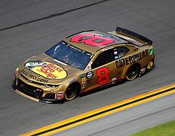 February 17, 2019 - Daytona, FL, U.S. - DAYTONA, FL - FEBRUARY 17: Daniel Hemric, Richard Childress Racing Chevrolet Camaro, Bass Pro Shops/Caterpillar (8) during the running of the 61st annual Daytona 500 on February 17, 2019 at Daytona International Speedway in Daytona Beach, Florida (Photo by Jeff Robinson/Icon Sportswire) (Credit Image: © Jeff Robinson/Icon SMI via ZUMA Press)
