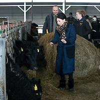 QMS Japanese Visit to Netherton Farm