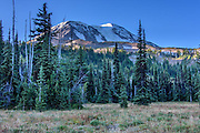 Morning sun had reached the peak of Mt Adams but not come into Killen Meadow. Adams Glacier remained in the shadow of the peak. The meadow had taken on fall colors and the air hovered around freezing.