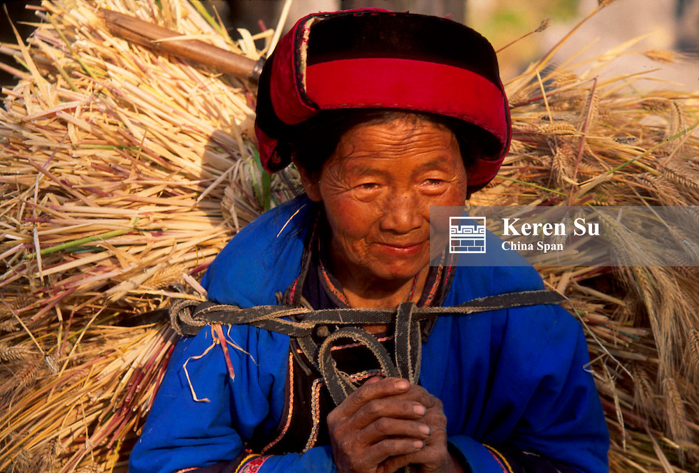 An edlerly Sani woman carrying rice straw, Stone Forest, near Kunming, Yunnan Province, China