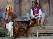 Two men sitting on the steps of a building with a goat in Nepal.