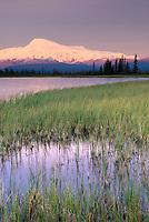 Mount Sanford 16,237¬?ft (4,949¬?m)  Wrangell-St. Elias National Park Alaska
