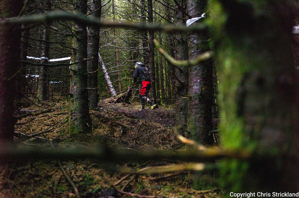 Glentress, Peebles, Scotland, UK. 31st May 2015. A rider has a quick check of the conditions prior to Stage 5 at The Enduro World Series Round 3 on the iconic 7Stanes trails during Tweedlove Festival.