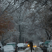 Nature - Urban Snow Scapes