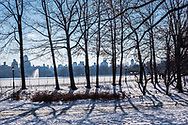 Tall winter trees stand guard along a frozen Reservoir in Central Park with a hazy east side skyline in the distance.
