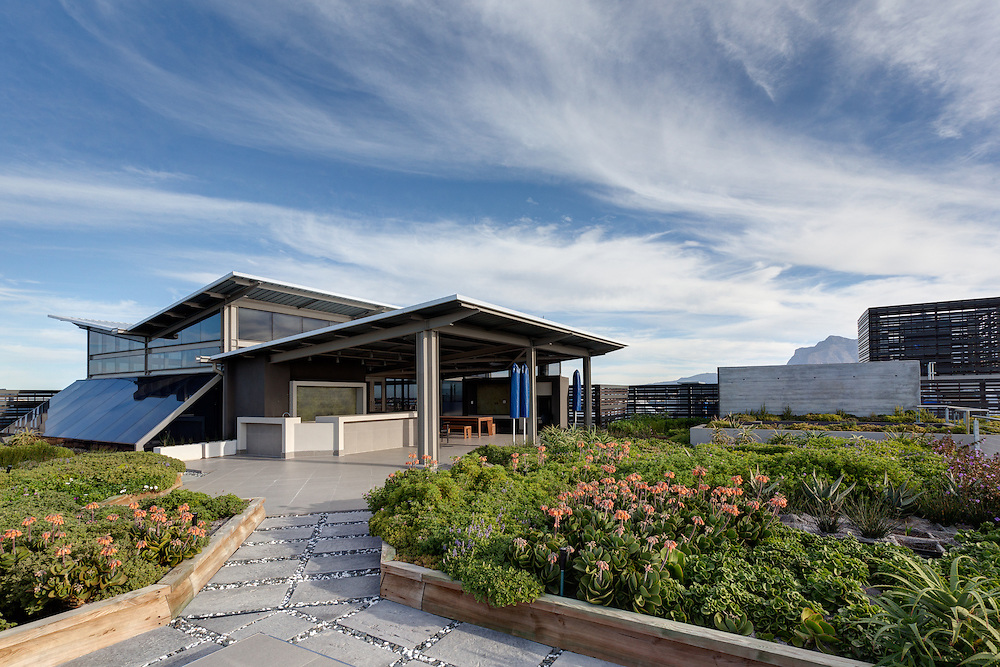 Rooftop garden and gathering space, Aurecon office building in Cape Town, South Africa.