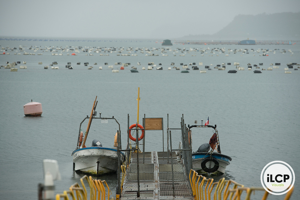 Aquaculture and salmon farming, central-east Chiloê Island.