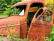 A rusty moving truck provides a home for the bushes and ferns that are slowly taking it over. Kestner Homestead, Olympic National Park