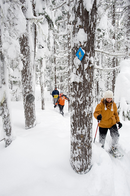 Front view of three adults in snowshoes hiking through deep powder in a forest in Bend, Oregon. (releasecode: jk_mr1033, jk_mr1035, jk_mr1034) (Model Released)