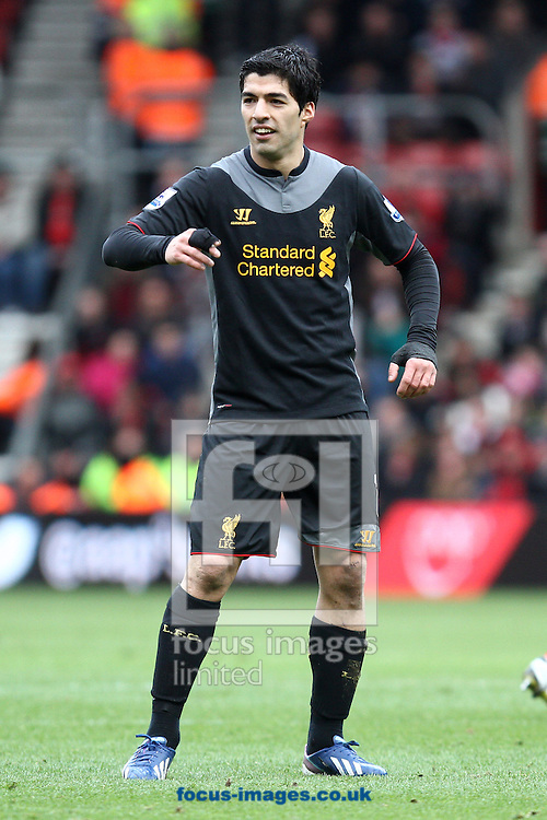 Picture by Daniel Chesterton/Focus Images Ltd +44 7966 018899.16/03/2013.Luis Suarez of Liverpool argues with the assistant referee during the Barclays Premier League match at the St Mary's Stadium, Southampton.