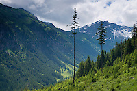 Landscape view in mountain area near Steg, Liechtenstein