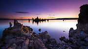 Dawn light over tufa at Mono Lake, Mono Basin National Scenic Area, California USA