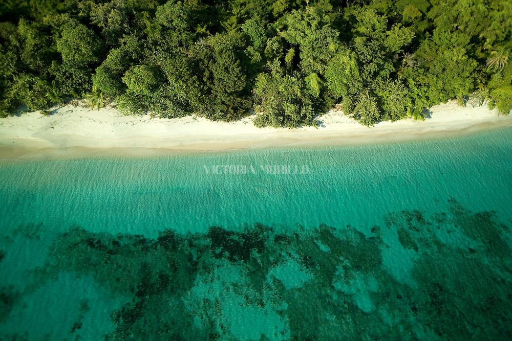 Bocas del Toro es una provincia de Panamá y su capital es la ciudad homónima de Bocas del Toro. Tiene una extensión de 4 643,9 km², una población de 125,461 habitantes (2010)1 y sus límites: al norte con el mar Caribe, al sur con la provincia de Chiriquí, al este y sureste con la comarca Ngäbe-Buglé, al oeste y noroeste con la provincia de Limón de Costa Rica; y al suroeste con la provincia de Puntarenas de Costa Rica. La provincia incluye la isla Escudo de Veraguas que se encuentra en el golfo de los Mosquitos y separada del resto por la península Valiente.<br /> <br /> En la provincia de Bocas del Toro, la geografía y la cultura han influido las relaciones de producción: agrícolas en tierra firme (Changuinola, Almirante, Guabito y Chiriquí Grande) con población mayoritariamente indígena y cuyo principal cultivo es el banano que registra un gran aporte al país en cuanto a exportación, principalmente a los Estados Unidos y Europa; y turística - de servicios en el archipiélago (Bastimentos y Bocas Isla también llamada Isla Colón) con población latina -afroantillana, cuya economía se basa en el turismo, los servicios y la pesca.<br /> <br /> Bocas del Toro es un mosaico de culturas: española, indígena, inmigrantes afro-antillanos de las Indias Occidentales en su mayoría inglés y franco parlantes, alemanes y norteamericanos, todos han sido parte del desarrollo de la región.<br /> <br /> Los principales bailes folklóricos son los de origen afro-antillano e indígena. Los bailes como calidonia , polca y cuadrilla antillana se bailan con vestidos de salón y los bailes como calipso, congas y Palo de Mayo con atuendos afro-antillanos.<br /> <br /> <br /> <br /> ©Alejandro Balaguer/Fundación Albatros Media.