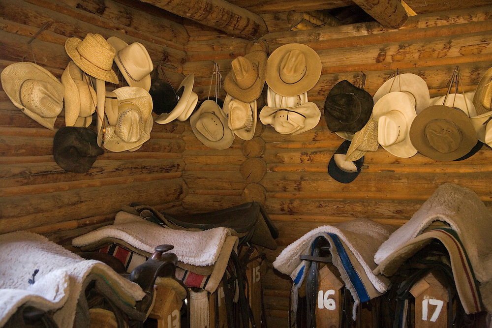 United States, Montana, Livingston, hats and saddles in tack room of barn