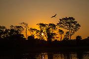 Sunset, Brazil; Mato Grosso; Pantanal; Rio Piquiri