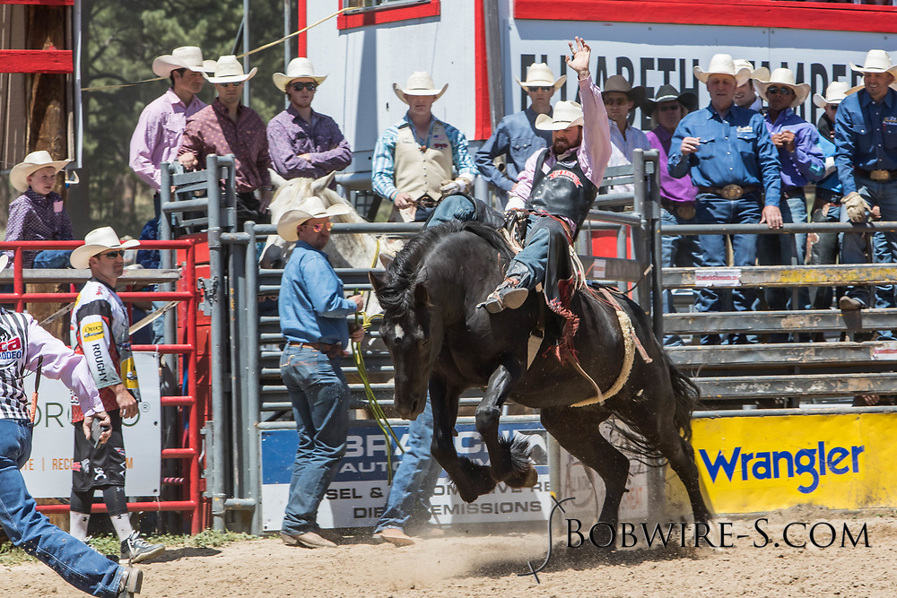 Logan Patterson rides Summit Pro Rodeo's 53 Cyborg in the bareback riding during the first performance at the Elizabeth Stampede on Saturday, June 2, 2018.