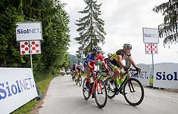 Jon Bozic (SLO) of KK Adria Mobil during Stage 3 of 24th Tour of Slovenia 2017 / Tour de Slovenie from Celje to Rogla (167,7 km) cycling race on June 16, 2017 in Slovenia. Photo by Vid Ponikvar / Sportida