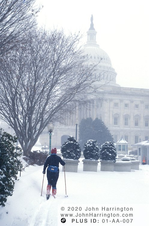 The blizzard that hit Washington DC and shut down the government, allowed for cross-country skiers to trek to the Capitol for exercise without the dangers of cars in their way.