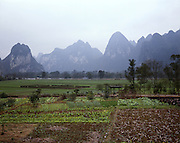 AA01198-01...CHINA - Vegetable garden and farm field near Caoping Village located along the banks of the Li River.