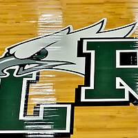 Lake Ridge HS Basketball