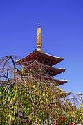 Japan, Tokyo, Asakusa, Senso-ji, 5 story pagoda
