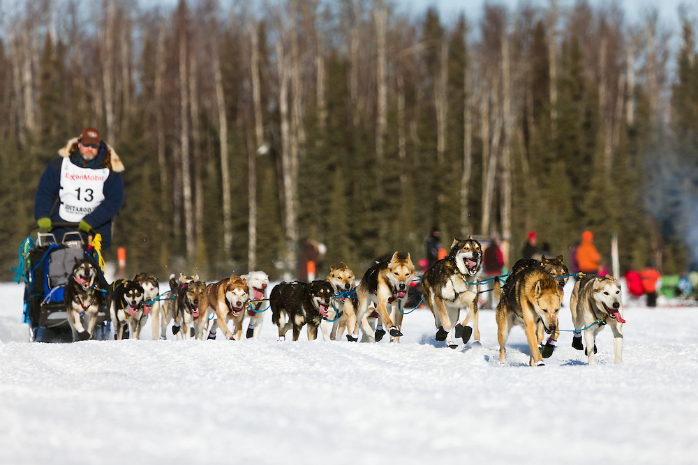Musher Bruce Linton competing in the 39th Iditarod Trail Sled Dog Race on Long Lake after leaving the Willow Lake area at the restart in Southcentral Alaska.  Afternoon.