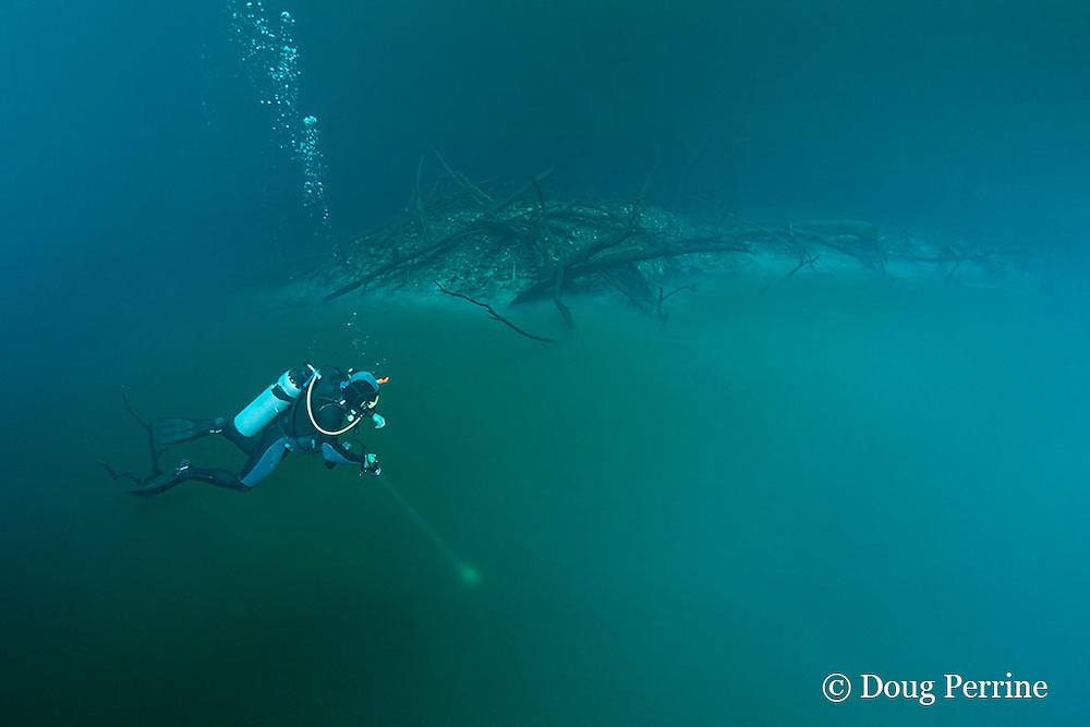 scuba diver shines light onto foggy layer of hydrogen sulfide that blankets the halocline at 30m depth in  Cenote Angelita, near Tulum, Yucatan Peninsula, Mexico