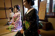 Three trainee geisha, known as 'maiko' until they make their debut appearance, have been hired and are being trained by the local authorities in Shimoda, Japan, on Wednesday 14th December 2011. .The three geisha are Awagiku (in white/silver kimono), Rinka (black kimono), Iroha (pink kimono). Their teachers are Nami (green kimono), Hanamaru (geisha in purple kimono) and their teacher of shamisen musical instrument is Chikako (wearing pink kimono, gold glasses)..The three trainee geisha were selected after applying for the positions which were advertised by Shimoda city council via the 'Hello Work' employment office. The Shimoda city council hope to keep the geisha tradition alive within their town by the appointment of the girls, and the girls will undertake geisha duties at local festivals and for tour groups and tourists.