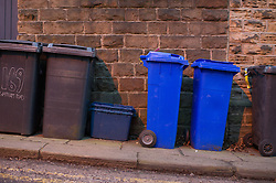 Wheelie bins on the pavement waiting to be emptied