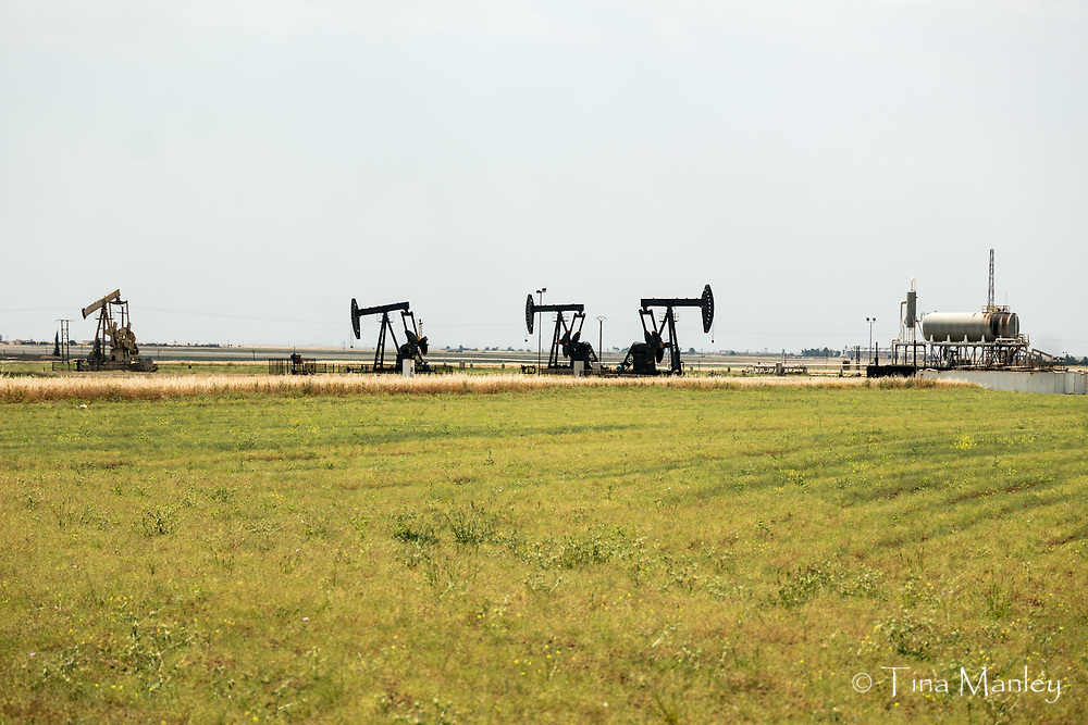 Pump jacks for pumping oil out of the ground in Syria.