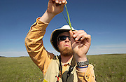 "During a weed survey, preserve ecologist for The Nature Conservancy, Rob Taylor, looks for ""the sign of the beast"" – patterns that indicate if this plant in a native grass or an invasive weed. Keeping out foreign weeds, and allowing native vegetation to flourish on the Zumwalt Prairie Preserve is a Conservancy priority. (Fully released)"