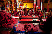 Tibetan Buddhist monks recite from holy scripts and chant during devotional practice at their monastery in the Tibetan Plateau. (From the book What I Eat: Around the World in 80 Diets.)