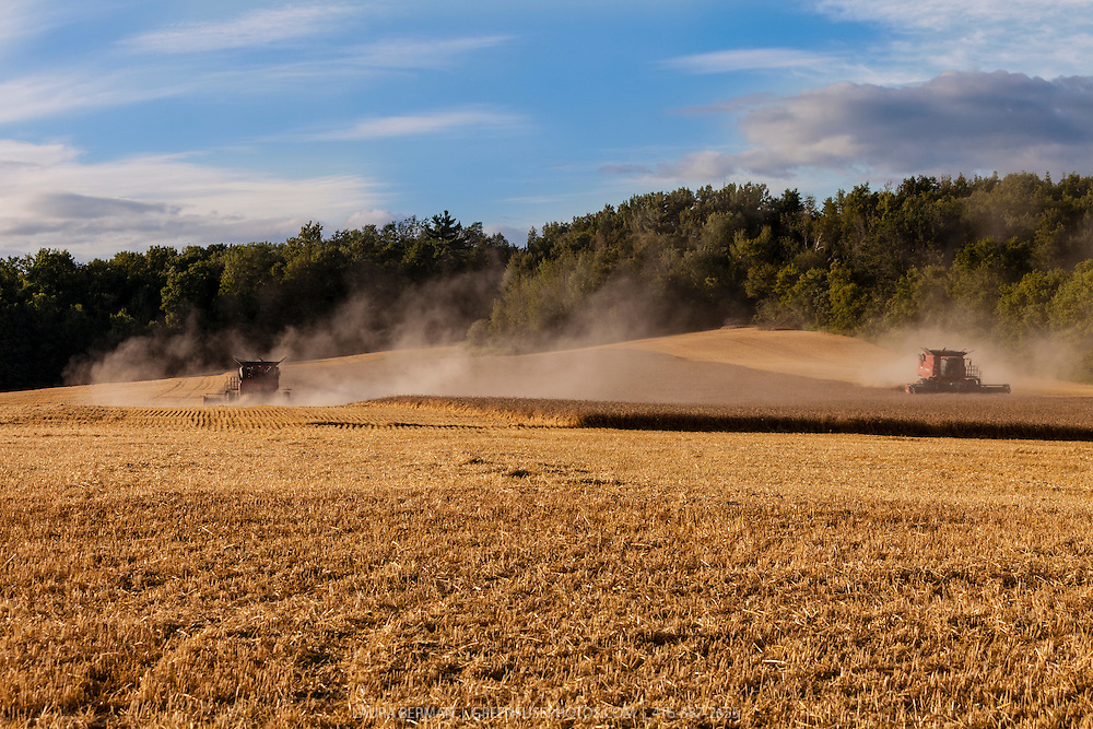 Two red Case 8120 combines harvesting a field of grain.