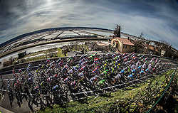 Peloton during the UCI Class 1.2 professional race 4th Grand Prix Izola, on February 26, 2017 in Seca, Slovenia. Photo by Vid Ponikvar / Sportida