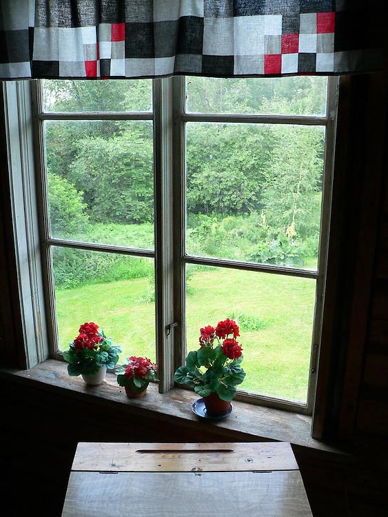 Fönster med blommor