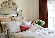 Whimsical interior design photography featuring a mischievous puppy surprising everyone with a random appearance.