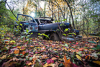An old abandon car in the woods at Maybury State Park in Northville, Michigan.