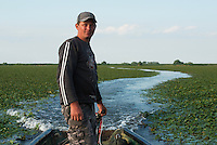 Danube Delta fisherman Florin Moisa navigating through the water chestnut carpet, Danube Delta, Romania.